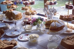 Vintage Afternoon Tea Party - Brentwood Essex